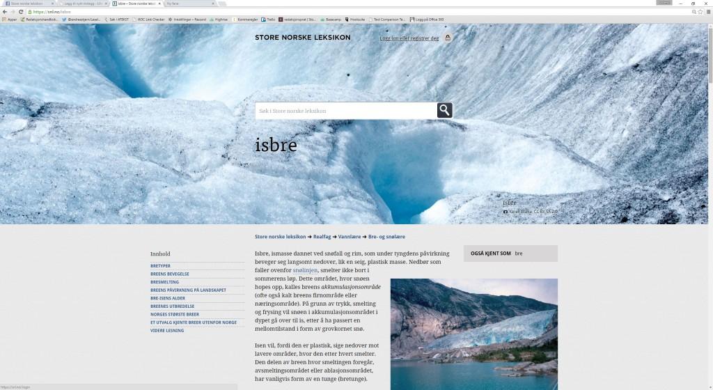 Skjermbilde av leksikonartikkelen om isbre
